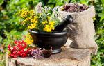 Чем лечить эндометриоз матки в домашних условиях