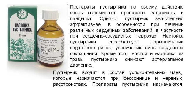 Пустырник при беременности: дозировка, можно ли пить