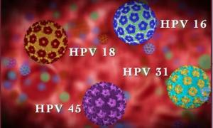 Прививка ВПЧ