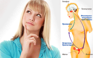Нужно ли принимать гормоны в период менопаузы