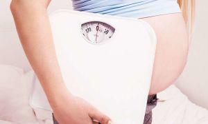 Норма веса при беременности