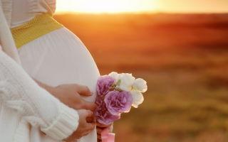 Как рассчитать срок беременности при ЭКО