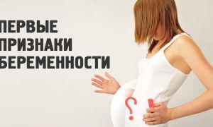 Когда появляются первые признаки беременности после зачатия