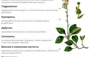 Народные средства и травы от эндометриоза матки