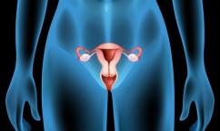 Рак шейки матки причины возникновения 21