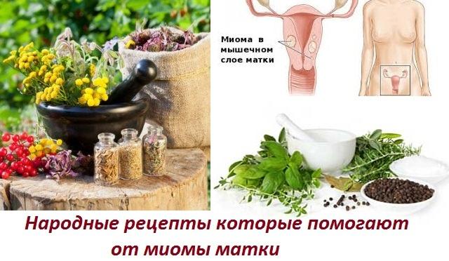Имбирь при миоме матки