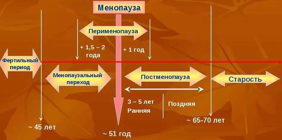 Лечение климакса - Медицинский портал EUROLAB