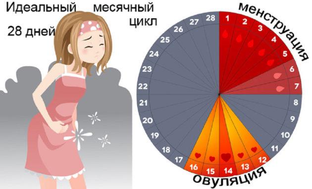 Нерегулярный менструальный цикл