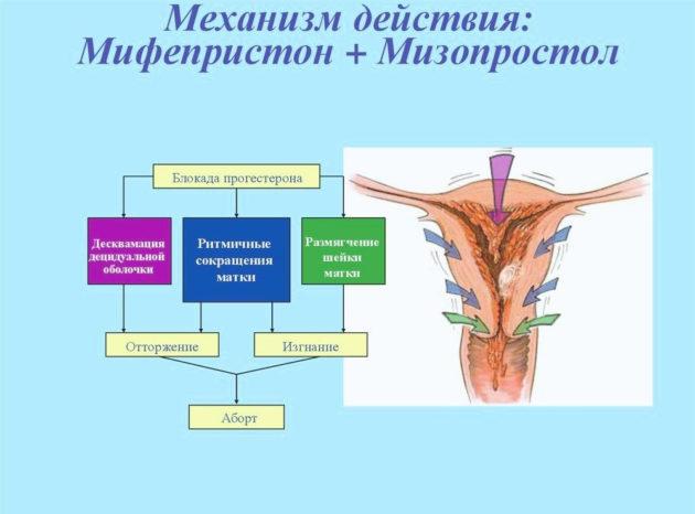 Мизопростол: отзывы при прерывании беременности, инструкция